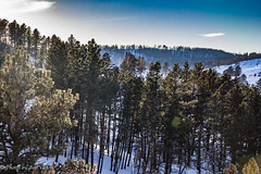 Custer Park 20180223-0060 (Photos By Bob Van) Tags: blackhills csp custerstatepark landscape snow southdakota winter custer unitedstates us