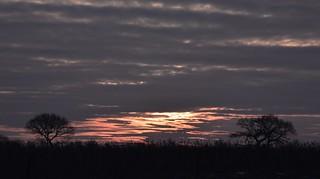 Die Sonne geht auf in Bergenhusen, Stapelholm (6)