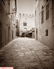 Albenga's Baptistery (DelioTO) Tags: antiquities aph09 architecture blackwhite city 4x5 historical italy pinhole toned trip