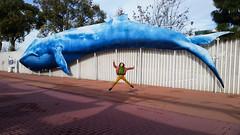 miranda and the whale (Maluni) Tags: valencia spagna espana spain acquario water acqua acquarium waterpark park