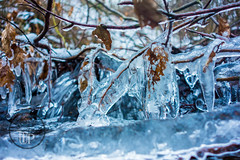 Frozen water (Sony_Fan) Tags: sony rx 100 kompakt kamera natur wasser water nature ice eis frozen gefroren winter blue blau kalt cold leaf blatt ast forest wald thomas umbach schwelm photographer sonyfan
