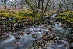 Beddgelert - Snowdonia (de_frakke) Tags: beddgelert wales snowdonia hafodyllan landschap nature water mountainstream bergbeek landscape