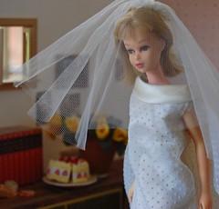 Francie Gets Married (Emily1957) Tags: weddingwonder vintage wedding dottedswiss francie vintagestraightleggedfrancie weddinggown veil weddingveil light naturallight nikon nikond40 kitlens mattel fashion tentdress