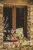 Esperando a que la primavera vuelva con sus colores... (Javier Arcilla) Tags: primavera colores ventana moñon elbierzo leon castillayleon pentax pentaxk70