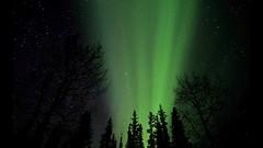 Dance of the Cosmos (Katy on the Tundra) Tags: northernlights auroraborealis nightsky