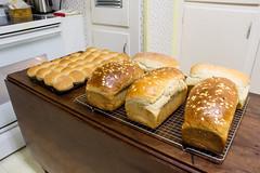 Saturday Baking (Dave In Oregon) Tags: baking bakedfromscratch bakingart oregon rainieroregon
