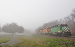 BNSF 2739 in Gainesville Texas (depotdude07) Tags: gp392 bnsf train railroad gainesvilletexas fog tree bn burlingtonnorthern