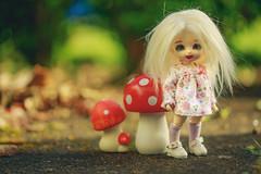 Spring Sunshine! (*DollyLove*) Tags: spring sun garden pukifee pong bjd fairyland doll bokeh canon 100mm macro mushroom