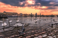 Prague (oliviercaenen) Tags: prague