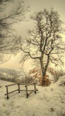 * Monghidoro: impressionism in the snow * (in Explore) * (argia world 1) Tags: monghidoro bologna montagne mountains emiliaromagna appenninibolognesi alberi trees foresta forest neve snow impressionismo impressionism