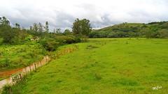 Paisagem... Tiradentes, MG, Brasil. (MCrissssss) Tags: grama verde paisagem arvores campo céu mata morro tranquilidade