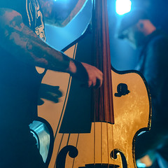 DSC03646 (directbookingberlin) Tags: concertphotography thecreepshow directbookingberlin binuuberlin