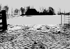 Meadow View II (CloudBuster) Tags: meadow weilanden groen green countryside platteland friesland water open view uitzicht farms boederijen shadows schaduwen black white zwart wit