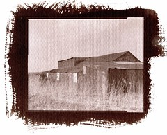 Fenland #2 (Andrew Bartram (WarboysSnapper)) Tags: saltprint 4x5 toyo watercolourpaper foma100 largeformat sheetfilm alternativeprocess fenland cambridgeshire fens