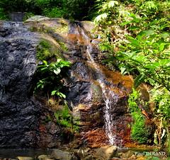 waterfall (paul derand) Tags: water forest rainforest river waterfall