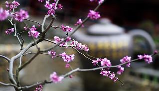 China ...Hangzhou