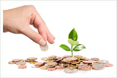 finance new business - start-up - Money and plant with hand (pp.nvpvivatcorp) Tags: money plant growth finance business coins grow leaf savings cash currency investment hand new sow bank banking care concept earnings economic euro gold green heap idea interest invest isolated loan many pile success tree wealth white background capital coin holding income life metaphor profit value seed italy