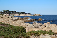 IMG_7555 (mudsharkalex) Tags: california pacificgrove pacificgroveca