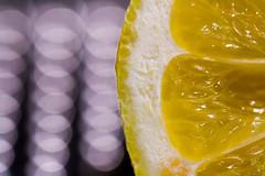 Citrus (G_HOWDEN) Tags: citrus macromondays lemon bokeh