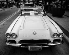 1962 Corvette (N3ptun0) Tags: car city carshow miami corvette chevrolet transport auto autoshow automobile automovil autos carro carros chevy ciudad showdecarros transporte