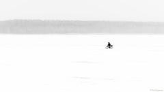 Through the white (Paweł Szczepański) Tags: greatphotographers trolled shockofthenew sal70200g