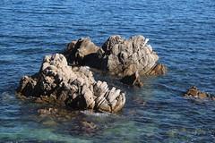 IMG_7643 (mudsharkalex) Tags: california pacificgrove pacificgroveca