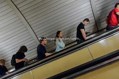 21 (cynefin_) Tags: cynefin metro moscú rusia russia moscow underground comunismo comunism sanpetersburgo дворецпролетариата москва́ moskva httpcargocollectivecomcynefinelpalaciodelproletariado