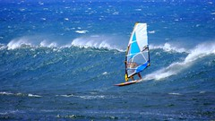 Surfs Up On Ho'okipa (Jim Mullhaupt) Tags: windsurf surf waves maui hawaii pacificocean beach island southpacific surfing windsurfing vacation holiday travel usa family kids jimmullhaupt surfers boating coral volcano exotic wallpaper clouds sky mountains landscape water waterfalls palms coconut bikini swim photo flickr geographic picture pictures camera snapshot photography nikoncoolpixp900 nikon coolpix p900 nikonp900 coolpixp900
