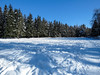 Spruce realm (iolarkov) Tags: spruce tree landscape forest winter snow frost nature