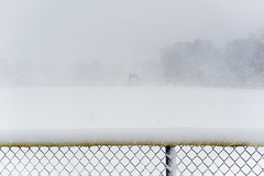 Whiteout at the Baseball Field (WilliamND4) Tags: hff fencefriday snow fence nikon d810 white storm blizzard
