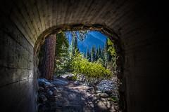 Yosemite.Tunnel.2600p.251 (l.dardennes) Tags: yosemite yosemitenationalpark california usa canoneos7dmarkii sigma1750mmf28 étatsunis us