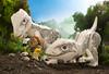 ALLOSAURUS AND A BOLD PALEONTOLOGIST LEGO DINO (Shobrick) Tags: shobrick legodino glénat book lego dinosaurs allosaurus dino minifig macro maquette small tiny eggs jurassicpark jurassicworld topoverthepop livre child children toys toyphotography photo