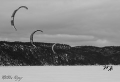 Line (mathieunigay) Tags: quebec saguenay chicoutimi labaie winter hiver sky snow ice fjord river sport kite ski extreme nb baw canada travel