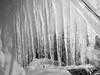 P3030419 (Martijn Tilroe Fotografie) Tags: ijselmeer ijs bevriezen lopen koud vriezen ijspegels