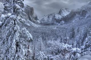 Heavy snow in Yosemite