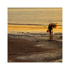 ... (ángel mateo) Tags: ángelmartínmateo ángelmateo cádiz andalucía españa playa lacaleta andalusia spain atardecer puestadesol luz mareabaja bajamar naranja mar orilla barco barca pescador arribar pesca soledad sunset light lowtide low tide orange sea shore boat fisherman arrive fishing loneliness
