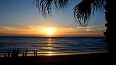 Atardecer. Sunset (.Guillermo.) Tags: cádiz andalucía playa beach sunset atardecer puestadesol sol palmeras agua mar sea landscape landscapes paisaje paisajes nikon