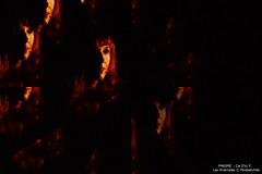 1 PHASME   DSC_9952K PHOTO Mirabelwhite (Mirabelwhite) Tags: phasme leshivernales cietheatre des doms avignon