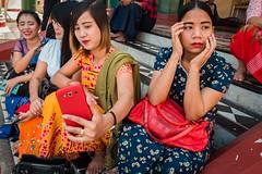Yangon (debbykwong) Tags: yangon myanmar myanmarburma peopleonthestreet selfie colour urbanandpeople streetmood streetshot streetphoto streetcandid streetphotographer streetmoment travel travelphoto lifeinmyanmar leica leicaq leicaqtyp116 leicacamera leicaphoto