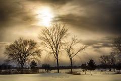 Landing's Sunset (Roger Daigle) Tags: sunset landings golf course winter nikon kingston ontario hdr d750 nikkor 70200 28