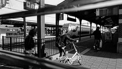 Train Running (Alfred Grupstra) Tags: bicycle people urbanscene blackandwhite citylife cycling commuter men city transportation modeoftransport outdoors rushhour street editorial travel lifestyles day station train hoorn nl