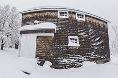 Winter Barn - Tenants Harbor Maine (Jonmikel & Kat-YSNP) Tags: maine tenantsharbor me stgeorge oldwoodsfarm stgeorgepeninsula midcoastmaine noreaster winter snow wetsnow march backyard woods field barn