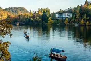 Lake Bled, Slovenia, Balkans. (布莱德湖,斯洛文尼亞)