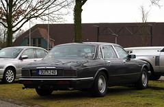 Daimler 3.6/4.0 (XJ40) (rvandermaar) Tags: daimler xj40 xj 36 40 jaguar jaguarxj daimlerxj jaguarxj40