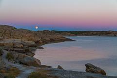 Marstrand/Sverige 2013 (karlheinz klingbeil) Tags: sverige ocean meer mond marstrand water abend sweden moon schweden evening wasser dusk