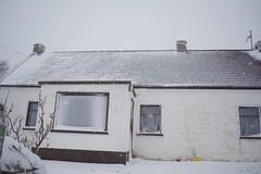 DSC_8009 (seustace2003) Tags: baile átha cliath ireland irlanda ierland irlande dublino dublin éire glencullen gleann cuilinn st patricks day zima winter sneachta sneg snijeg neve neige inverno hiver geimhreadh