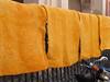 Gelb (MKP-0508) Tags: marrakesch marokko maroc morocco gelb jaune yellow färber dyer souk färbersouk wolle wool laine teinturier