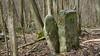 Borne n°28 (Phil du Valois) Tags: borne n°28 bornage forêt forestière forestier limite frontière