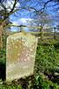 Swastika Grave (R~P~M) Tags: grave tomb headstone gravestone tombstone cemetery graveyard churchyard swastika albury oxon oxfordshire england uk unitedkingdom greatbritain