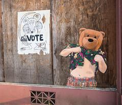 VOTE (UrbanphotoZ) Tags: astoria storefront deserted man bearhead hawaiianshirt boxers wheatpaste rat vote bag artrat vent plywood streetart urbanart worn oregon